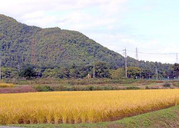 草原,村,屋外,秋,晴れ