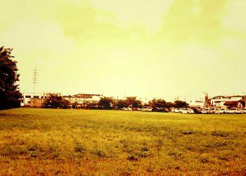 草原, 町, 屋外, 春, 晴れ,ヴィンテージ