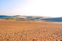草原, 砂丘,アウトドア, 屋外, 晴れ