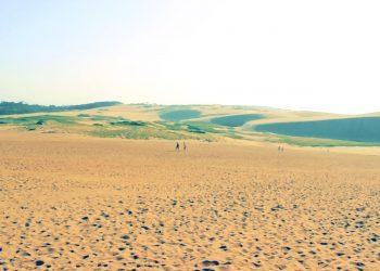草原, 砂丘,アウトドア, 屋外, 晴れ,昭和レトロ