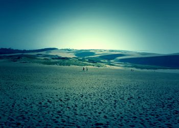 草原, 砂丘,アウトドア, 屋外, 晴れ,ホラー