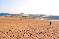 草原,砂丘,アウトドア,屋外,晴れ