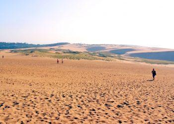 草原,砂丘,アウトドア,屋外