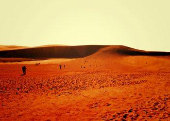 草原,砂丘,アウトドア,屋外,ヴィンテージ