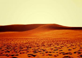 アウトドア,砂丘,夏,屋外,晴れ,ヴィンテージ