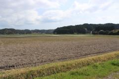 草原,村,屋外,春,曇り