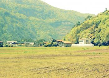 草原,村,屋外,春,曇り,昭和レトロ