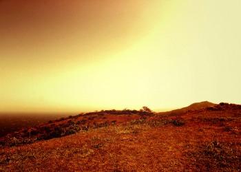 草原,村,屋外,春,曇り,ヴィンテージ