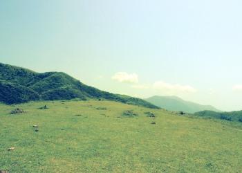 草原,アウトドア,晴れ,屋外,夏,昭和レトロ