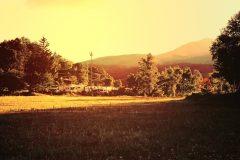 草原,アウトドア,晴れ,秋,屋外