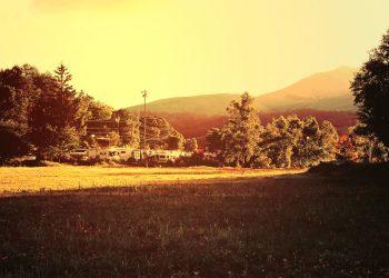 草原,アウトドア,晴れ,秋,屋外,ヴィンテージ