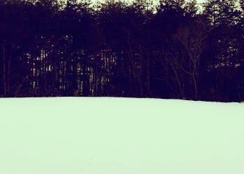 草原,雪原,アウトドア,晴れ,冬,屋外,昭和レトロ