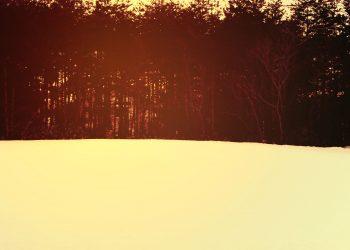草原,雪原,アウトドア,晴れ,冬,屋外,ヴィンテージ