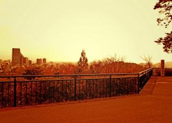 展望,都市,秋,屋外,曇り,ヴィンテージ