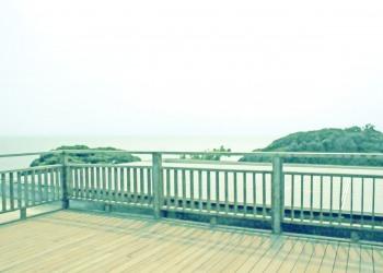 展望,町,屋外,夏,曇り,昭和レトロ