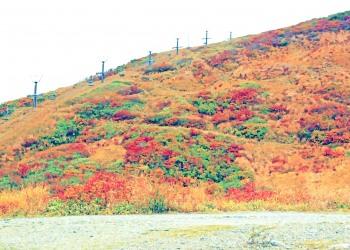 山道,アウトドア,秋,屋外,晴れ,昭和レトロ