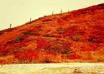 山道,アウトドア,秋,屋外,晴れ,ヴィンテージ