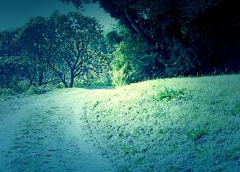 林道,アウトドア,冬,屋外,晴れ,ホラー