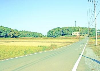 林道,村,晴れ,屋外,秋,昭和レトロ