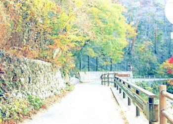 山道,村,屋外,秋,晴れ,昭和レトロ