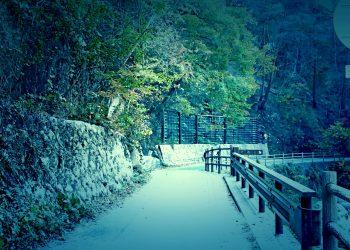 山道,村,屋外,秋,晴れ,ホラー