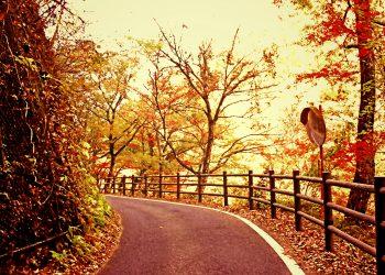 山道,村,屋外,秋,晴れ,ヴィンテージ