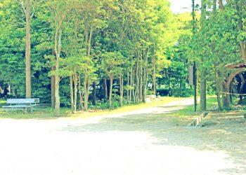 公園, 町, 屋外, 夏, 晴れ, 昭和レトロ