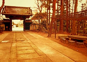 神社, 町, 屋外, 冬, 曇り,ヴィンテージ