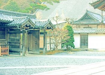 神社,町,屋外,秋,昭和レトロ