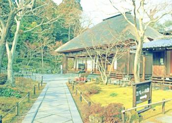 日本庭園,和,屋外,秋,晴れ,昭和レトロ