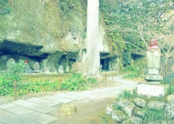 神社,和,屋外,冬,晴れ,昭和レトロ