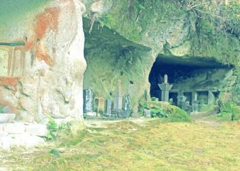 寺,日本庭園,和,冬,屋外,昭和レトロ
