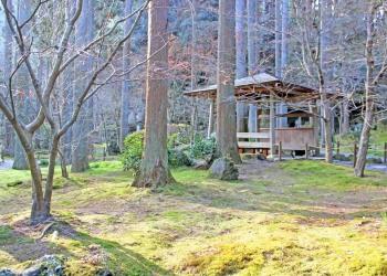 寺,日本庭園,和,冬,屋外