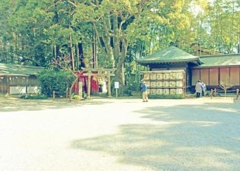 神社,日本庭園,和,冬,屋外,昭和レトロ