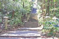 神社,日本庭園,屋外,晴れ,夏