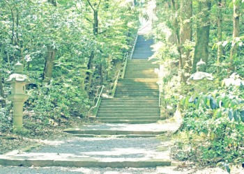 神社,日本庭園,屋外,晴れ,夏,昭和レトロ