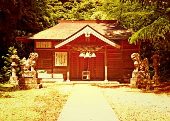 神社,村,屋外,夏,晴れ,ヴィンテージ
