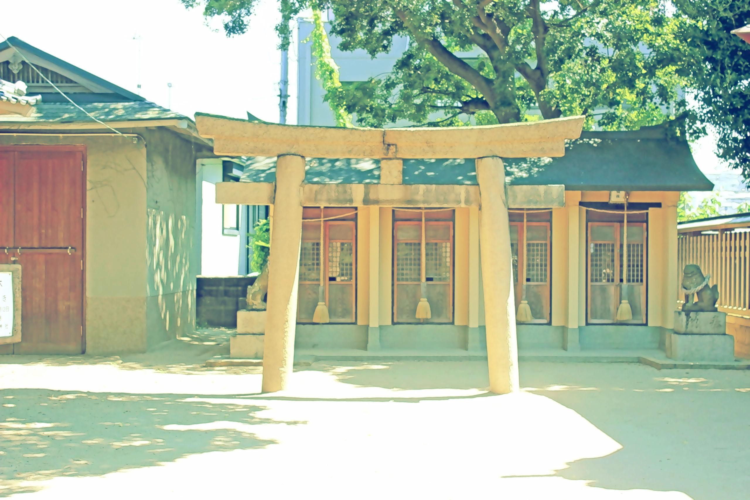 神社,和,屋外,夏,晴れ,昭和レトロ