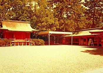 神社,和,屋外,夏,晴れ,ヴィンテージ