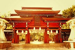 神社,和,屋外,夏,晴れ