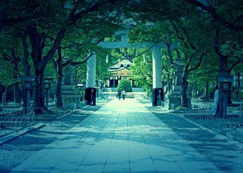 神社,和,屋外,夏,晴れ,ホラー