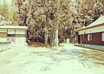 神社,町,晴れ,夏,屋外,昭和レトロ