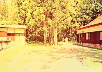 神社,町,晴れ,夏,屋外,ヴィンテージ