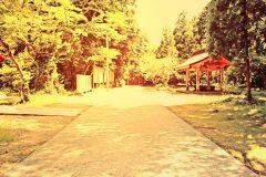 神社,町,晴れ,夏,屋外