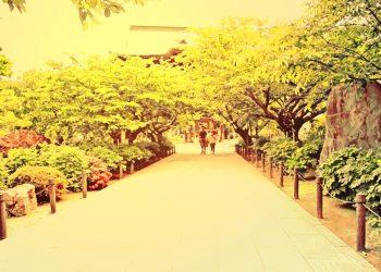 神社,村,晴れ,夏,屋外,ヴィンテージ